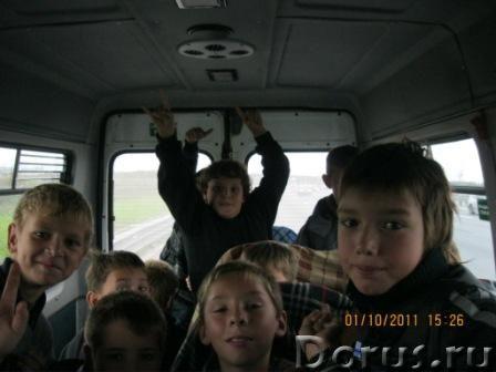 Для Вас Микроавтобусы в Санкт-Петербурге - Прочие услуги - Приглашаем в С-Петербург. Трансфер, корпо..., фото 8