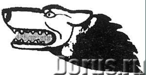 Журнал для регистрации больных животных форма 1-вет - Типографии и полиграфия - Журнал ветеринарно-с..., фото 1